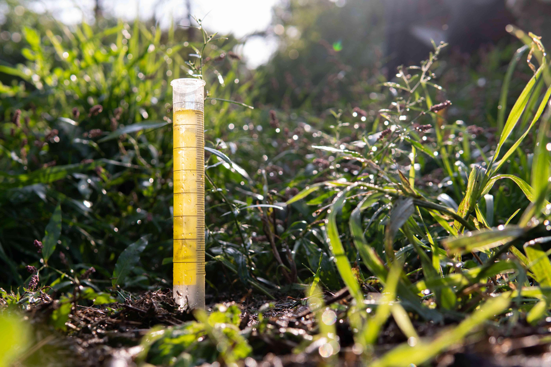 close up shot of rain gauge in garden