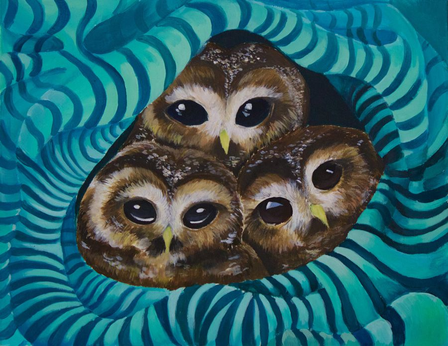 Painting of spotted owls