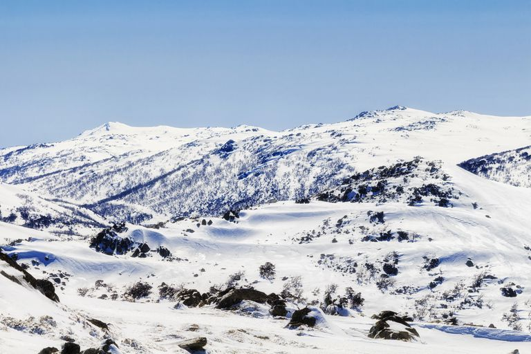 The Snowy Mountains of Australia covered in pure white snow with a few small brown plants peeking up under a blue sky