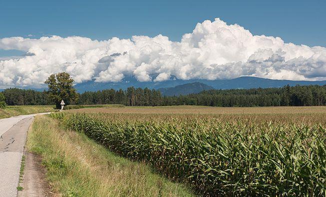Cumulonimbus calvus clouds over a farm in Austria