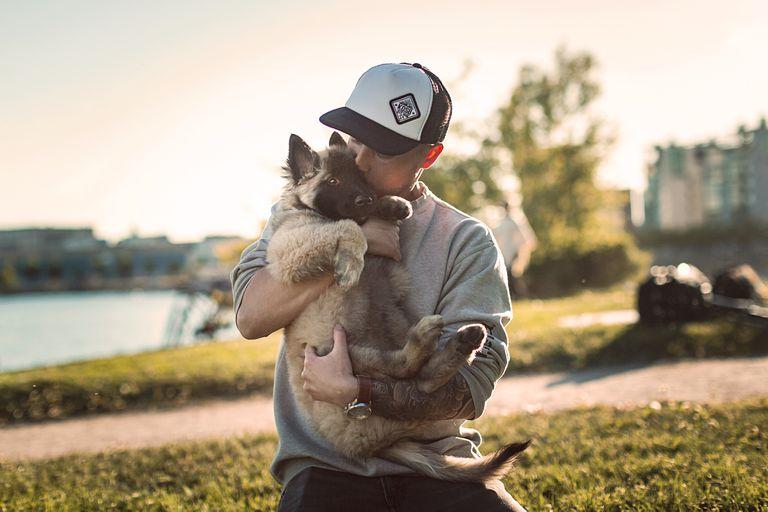 La compañía noruega de suministros para mascotas se une al paquete para ofrecer una licencia pagada por paternidad para cachorros