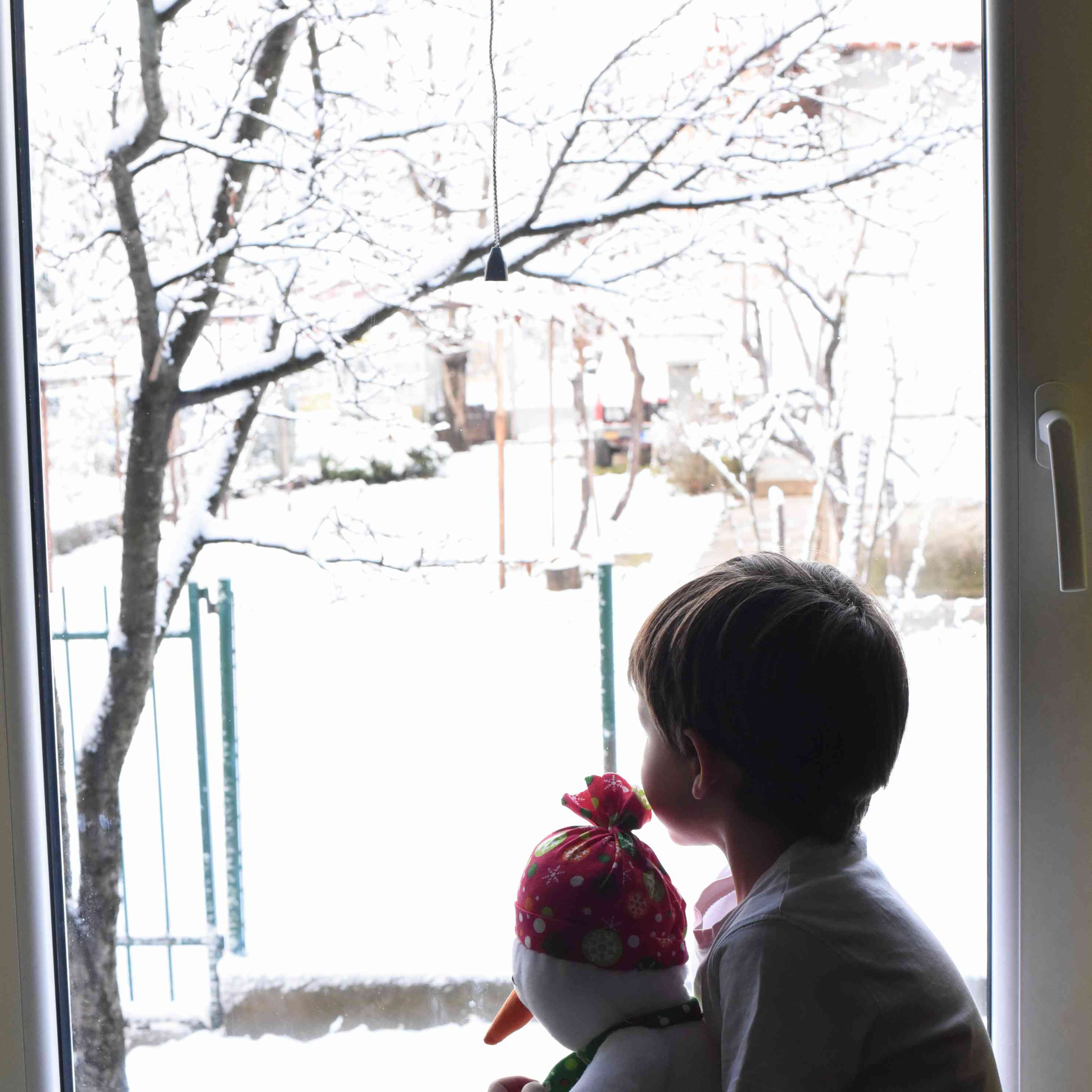 Looking out the window at a snowy scene.