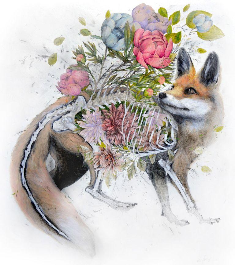 Fantásticos dibujos anatómicos de flora y fauna que representan la muerte y la renovación