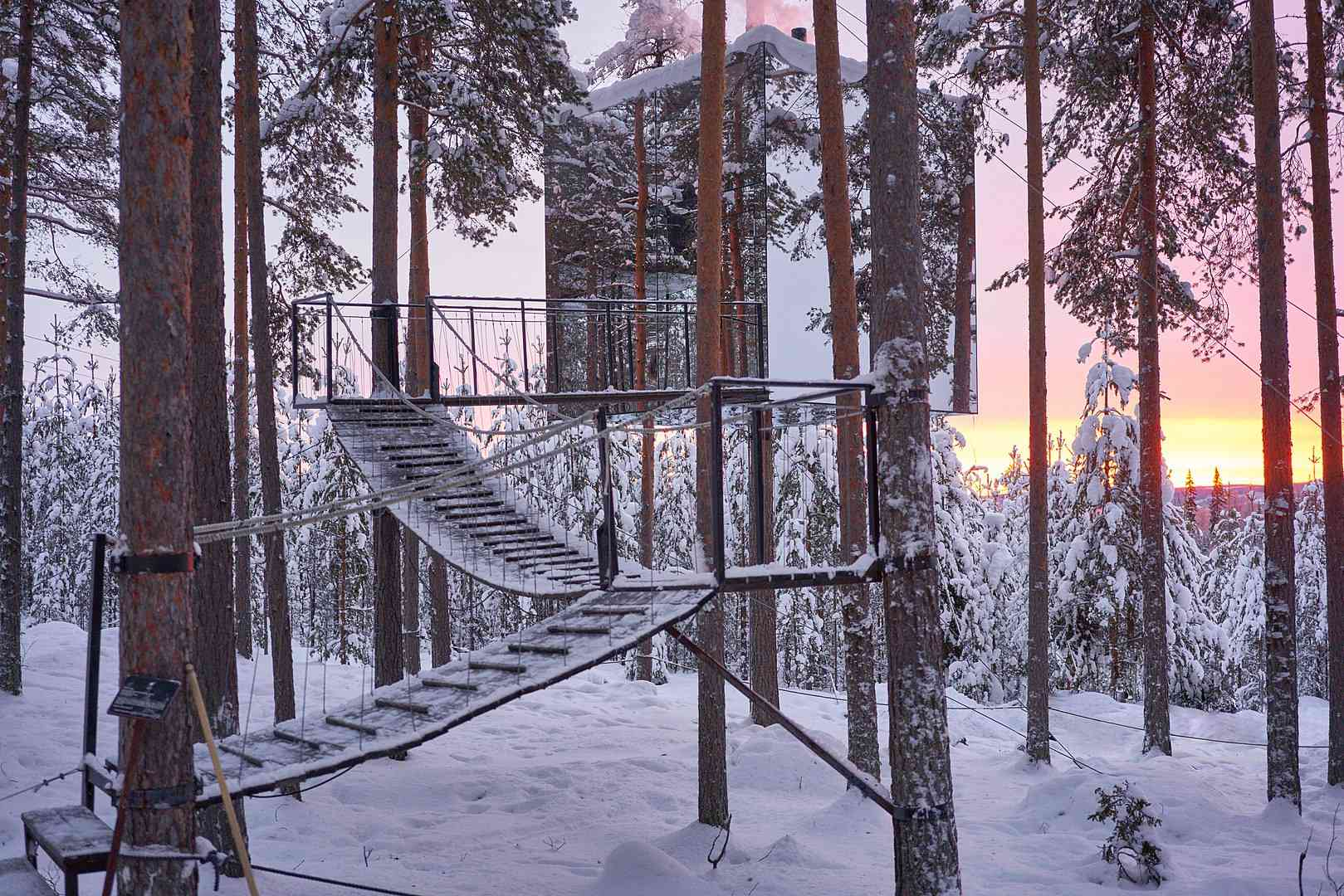 Reflective Treehotel Mirrorcube treehouse suspended in trees in forest