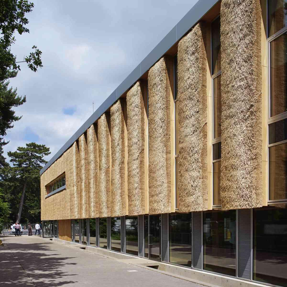 Enterprise Centre, made of thatch/ Architype architects/ Photo DennisGilbert/VIEW