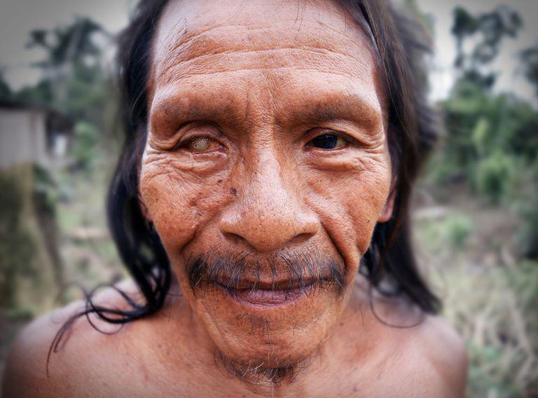 Antiguos cultivaron el Amazonas hace 4.500 años ... Y lo hicieron mejor que nosotros