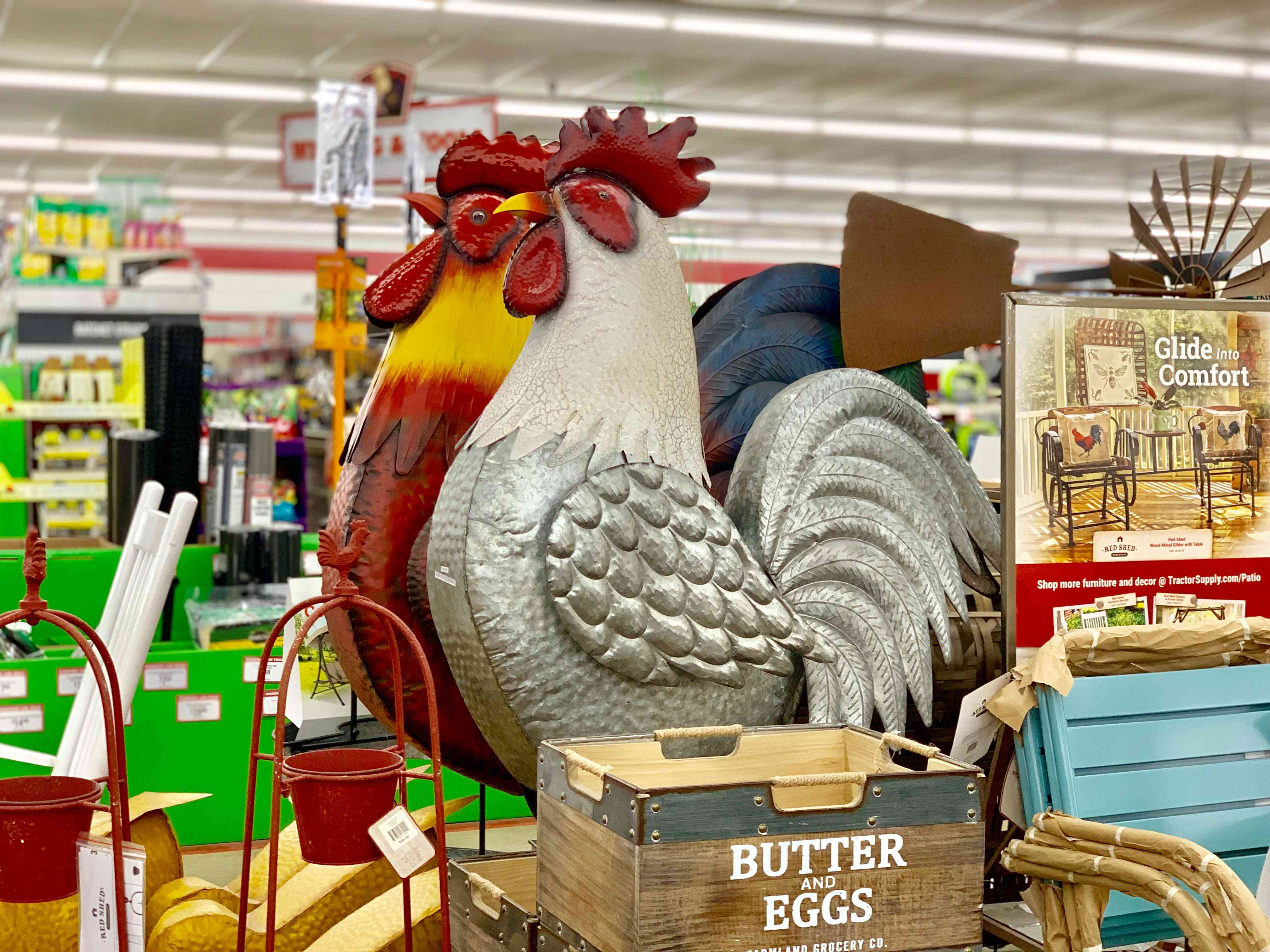 Despite its name, you can buy a lot more at Tractor Supply Company than just tractors.