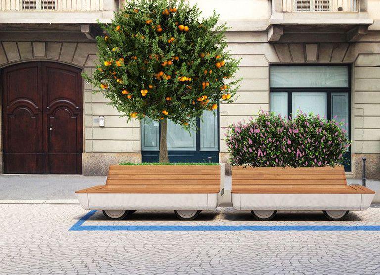 Matteo Cibic Tree Trolley