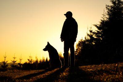 dark silhouette shot of person in baseball cap with german shepherd during dusk