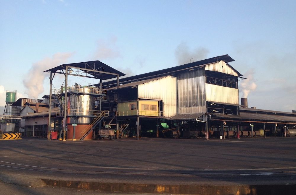 palm oil processing facility