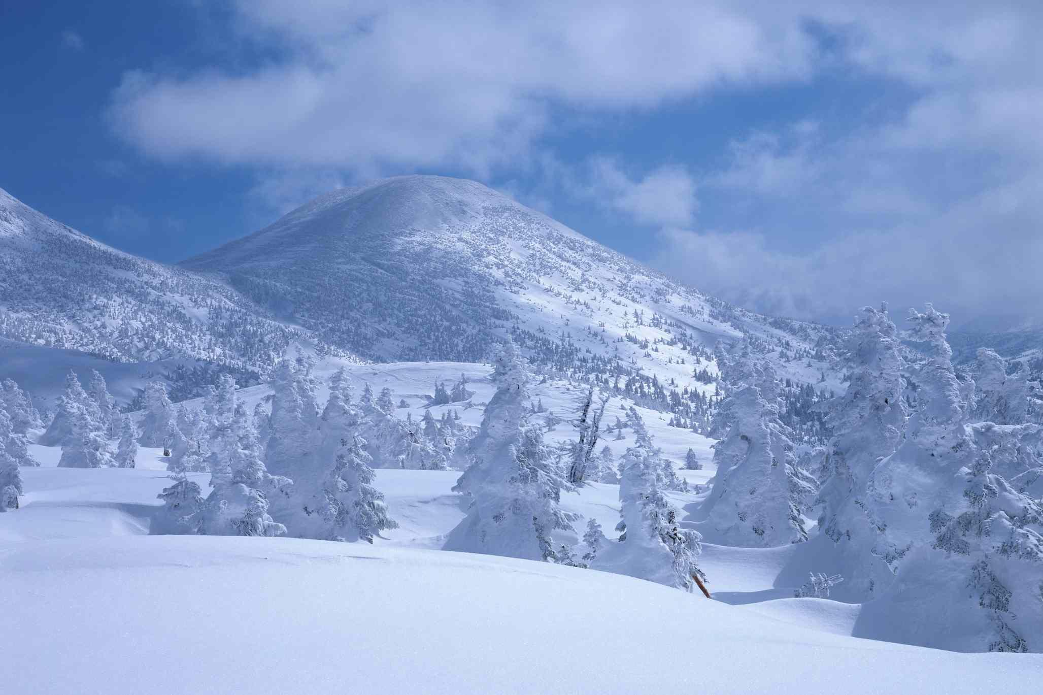 Snowy Mt. Hakkoda and forest in Aomori City
