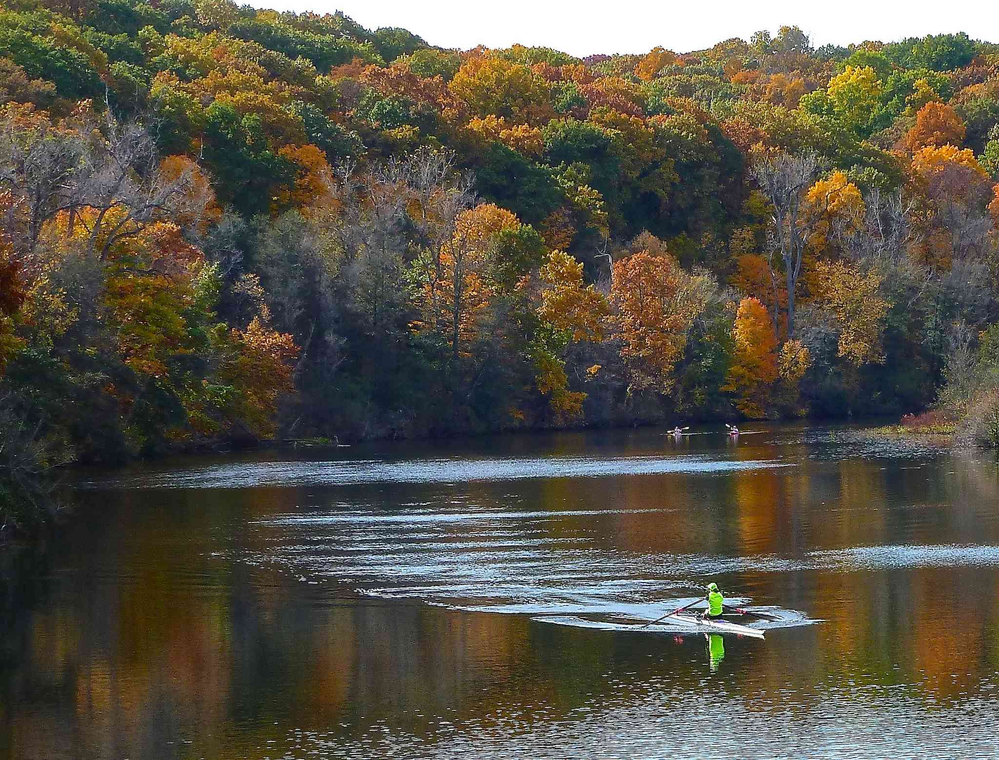 Autumnal trees behind the peaceful Huron River Water Trail in Michigan