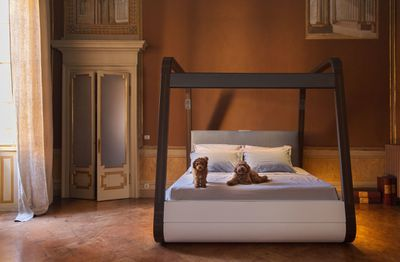 Canopy bed with dogs