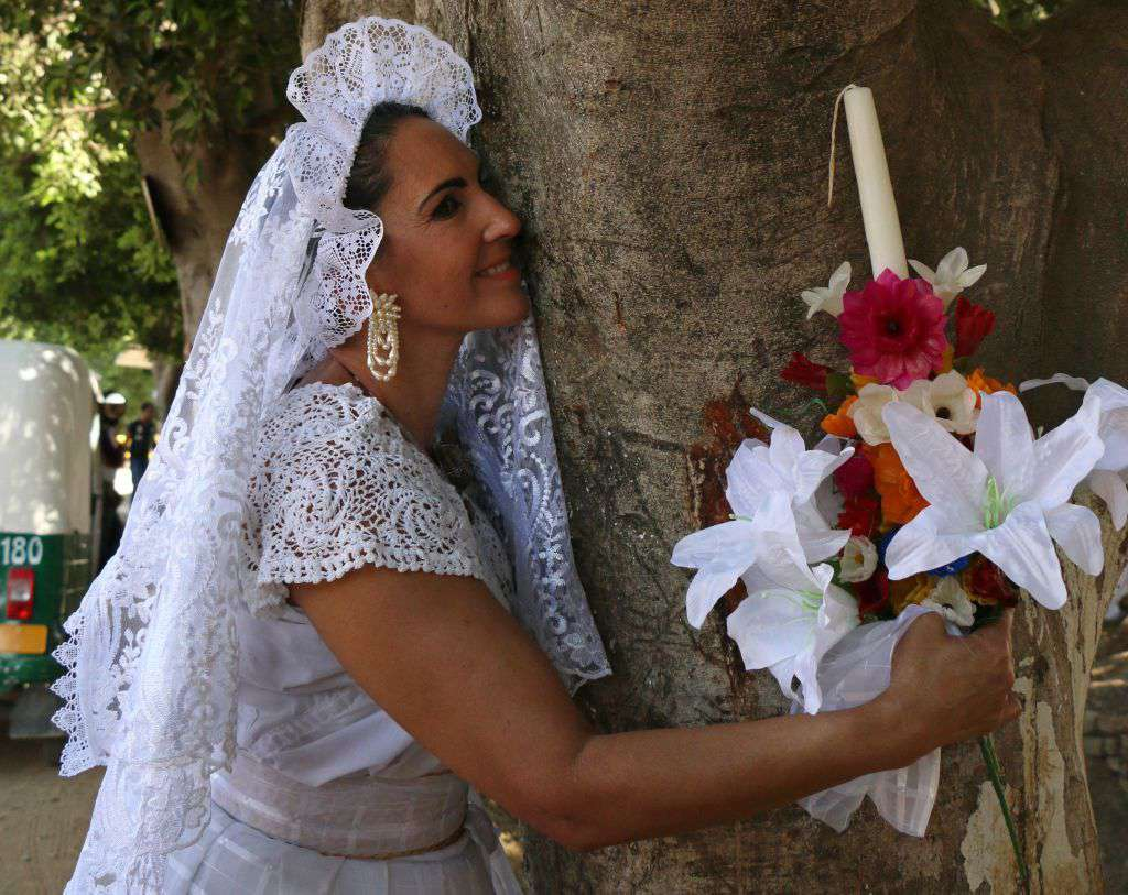 Marrying trees