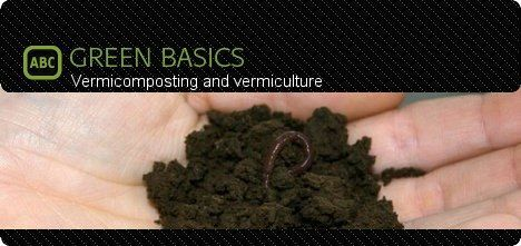vermicomposting-vermiculture-worms-how-to-green-basics-photo.jpg