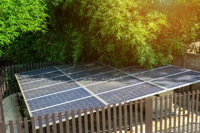 Solar panels obstructed by overhanging branches.