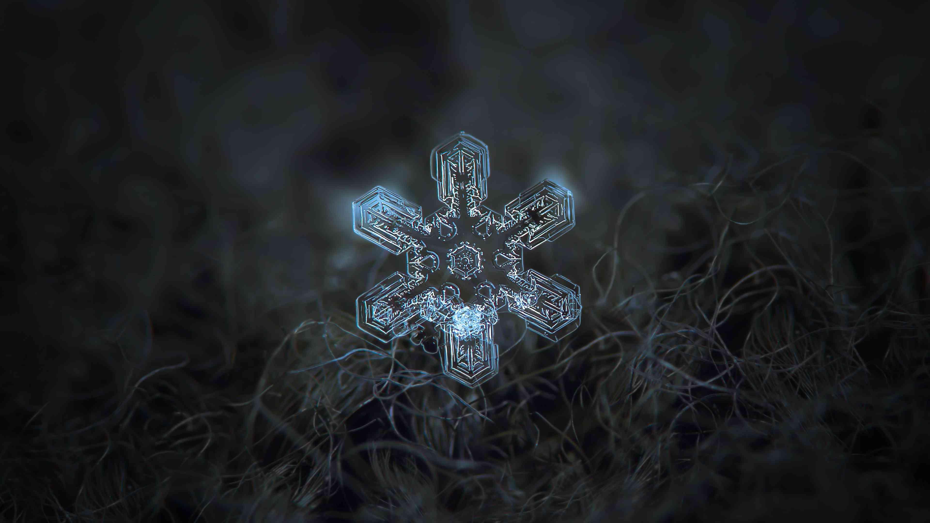 macro snowflake closeup