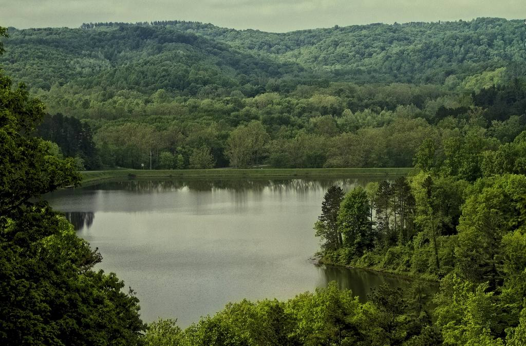 Wayne National Forest in Ohio