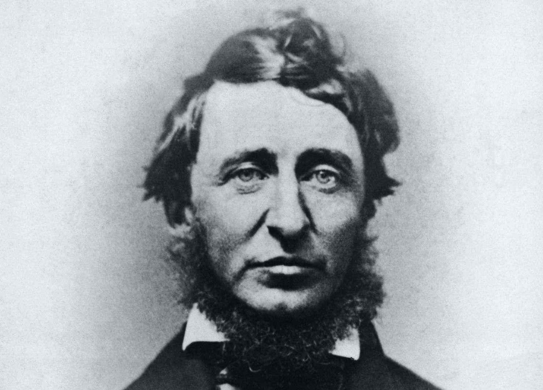 Black-and-white portrait of Henry David Thoreau