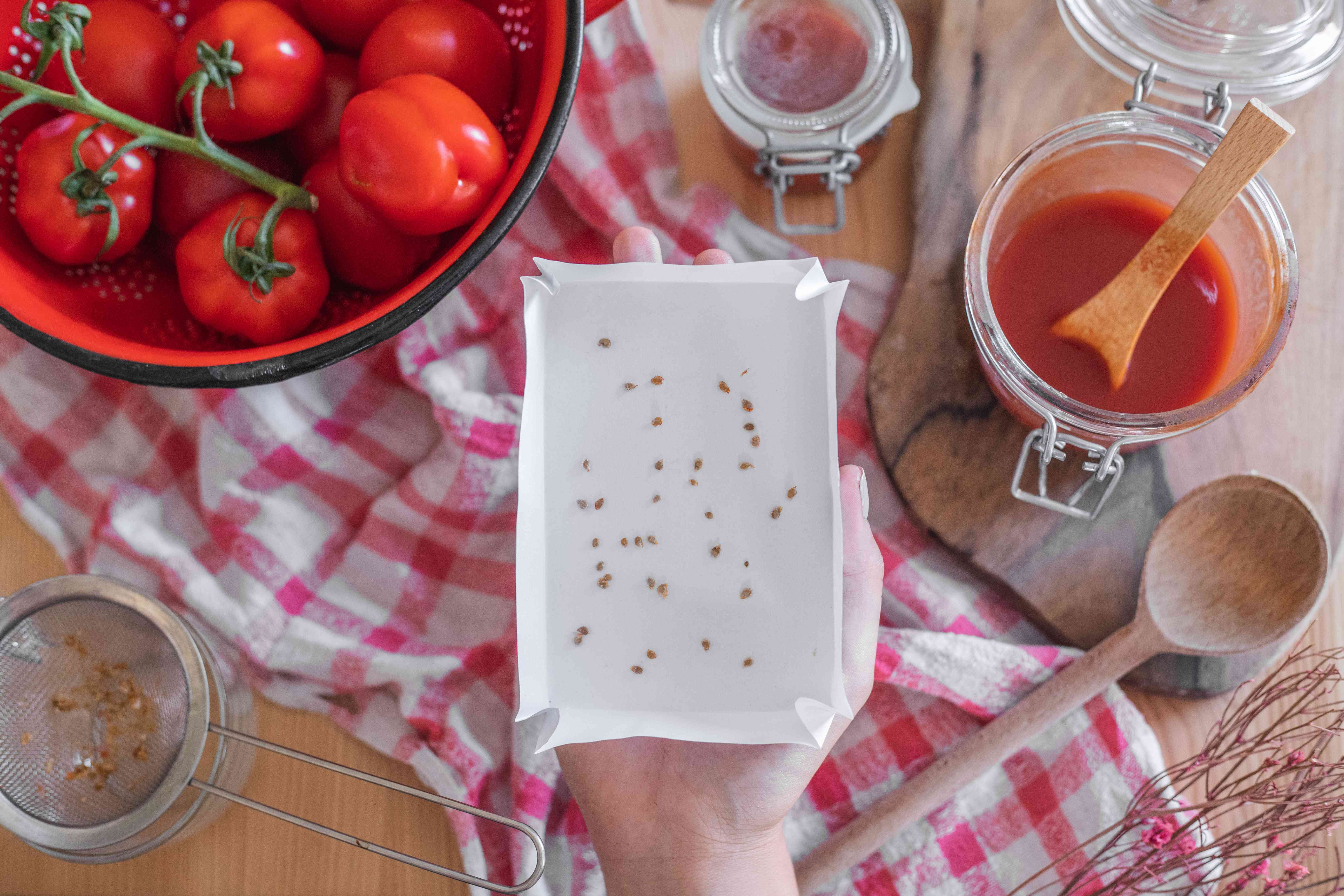 open hand holds dried tomato seeds surrounded by fresh tomatoes and kitchen equipment