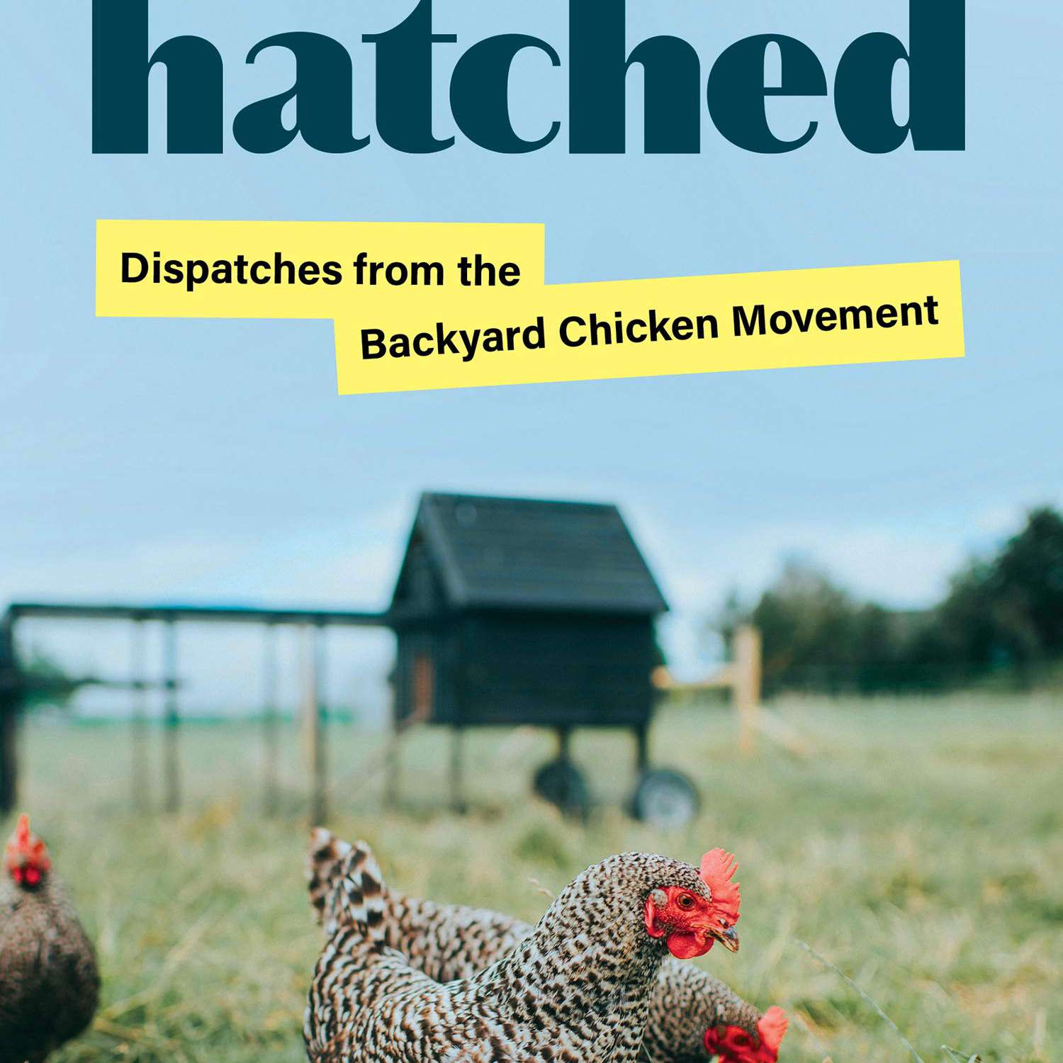 Cover of a book with cute chickens in the grass.