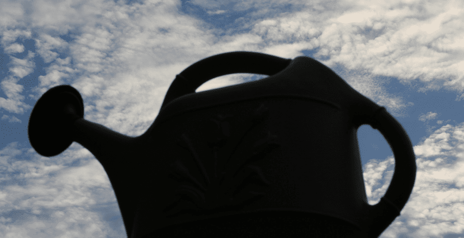 watering can photo