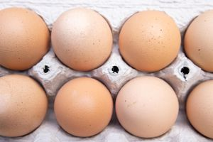 fresh farm brown eggs lined up in compostable egg carton