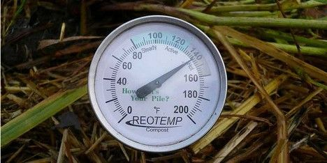 hot compost thermometer photo