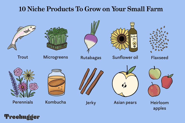 10 niche products grown on small farm