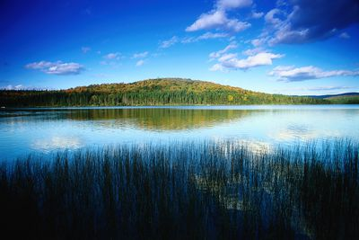 picturesque lake