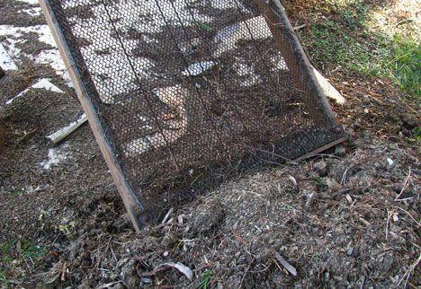No Dig soil sieve photo