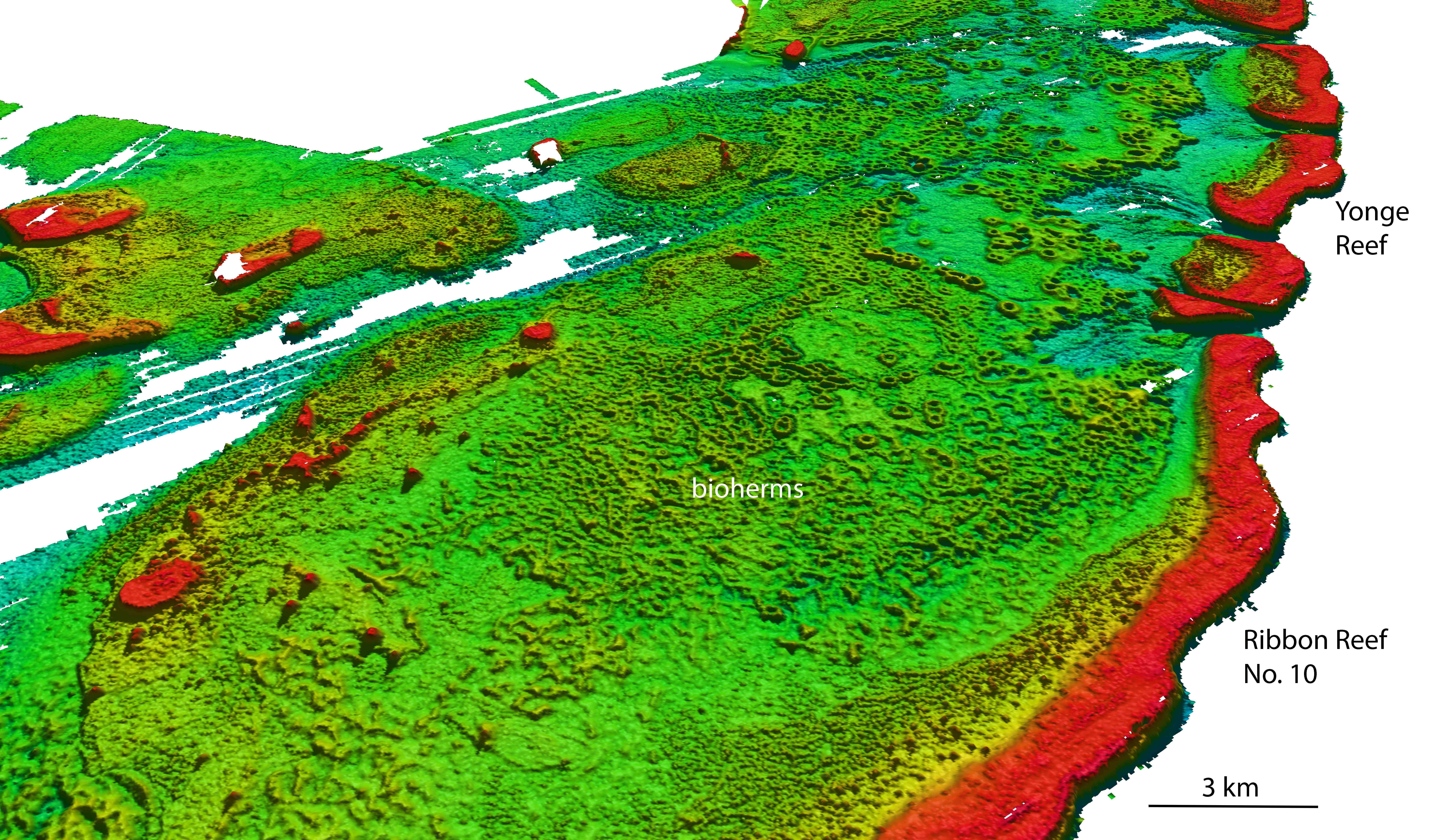 LiDAR view of bioherms at Great Barrier Reef