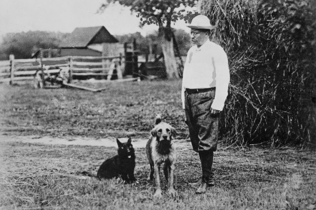 Theodore Roosevelt with his dogs on a farm