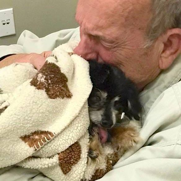 Elderly man crying while saying goodbye to his dog