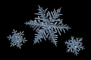 three macro snowflakes on black background