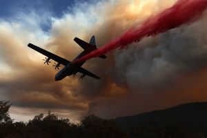 Airplane dropping red fire retardant on forest during August Complex Fire