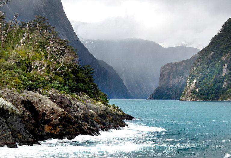 Nueva Zelanda lamenta la contaminación del agua, pero no limitará los productos lácteos