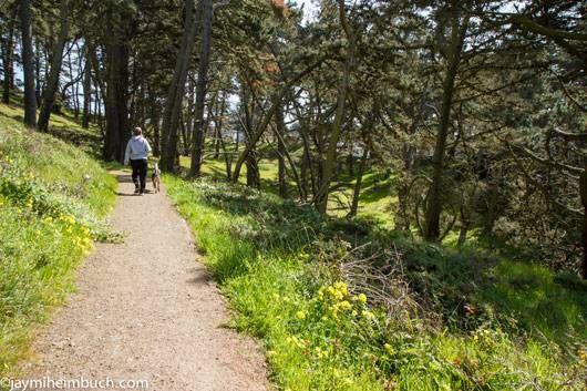 San Francisco Presidio trail