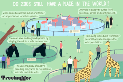 do Zoos still have a place in the world?