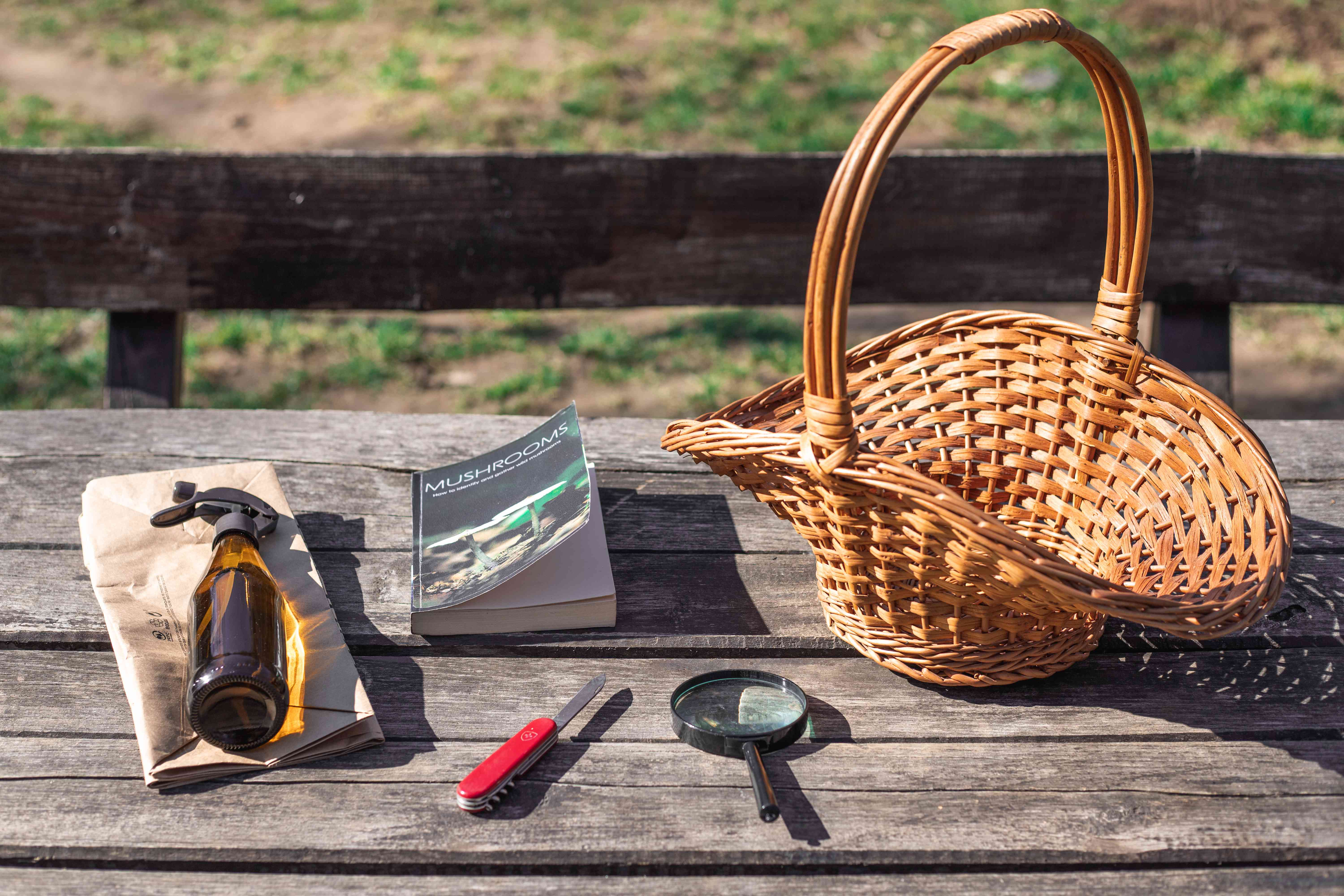 various mushroom walk tools including a basket book knife and magnifying glass
