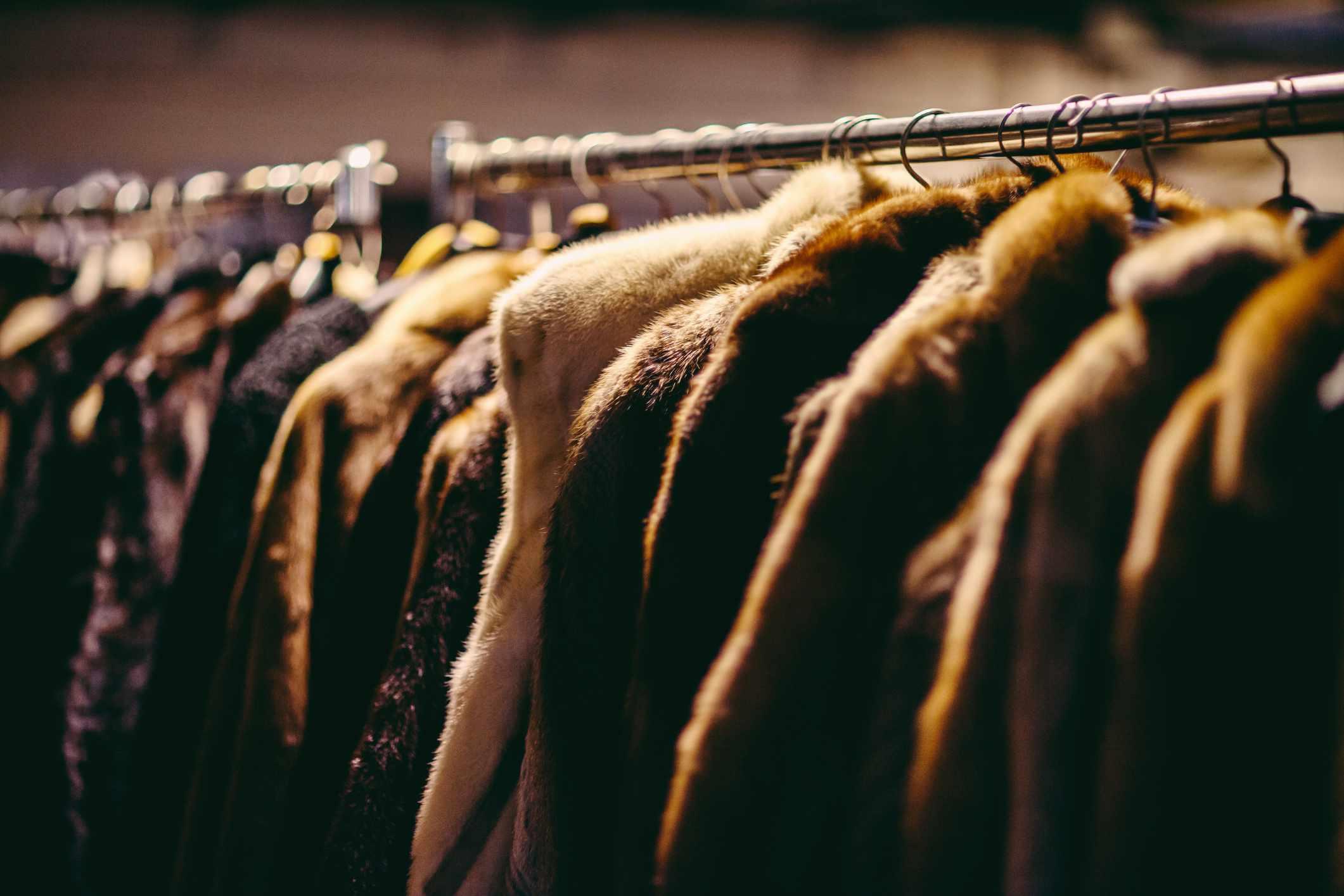 Hanging fur coats on a rack