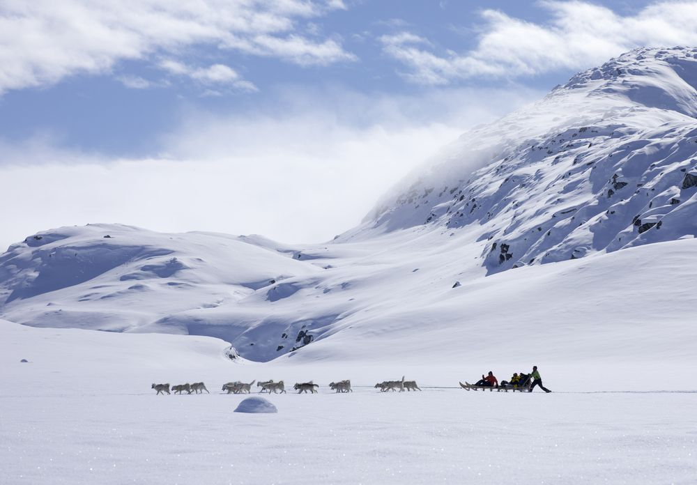 Inuit people traveling by dog sled