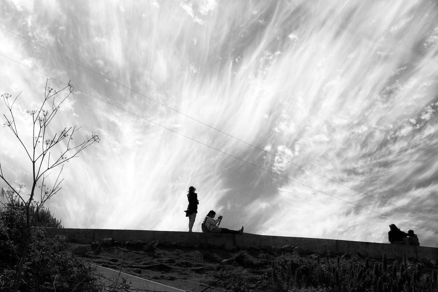 Black and white photo of wispy clouds
