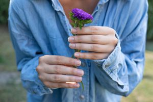 woman in denim shirt with natural nails holds up purple flower with both hands