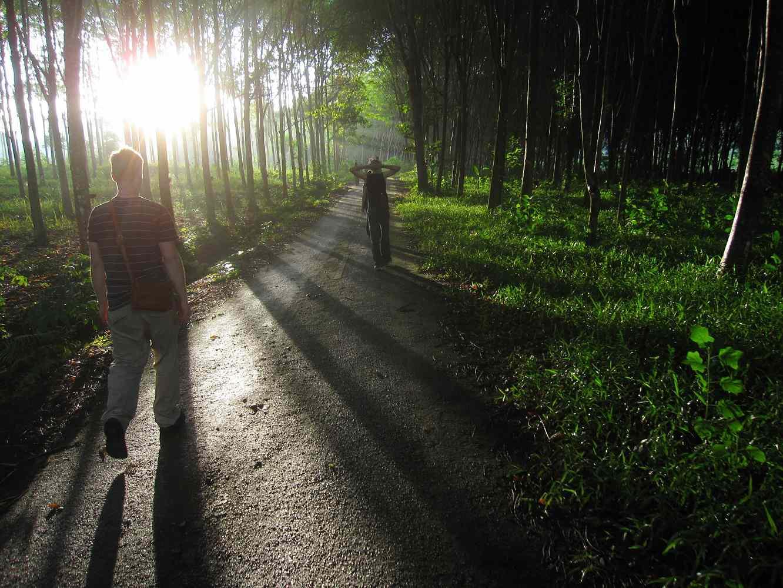 nature walk inspires awe