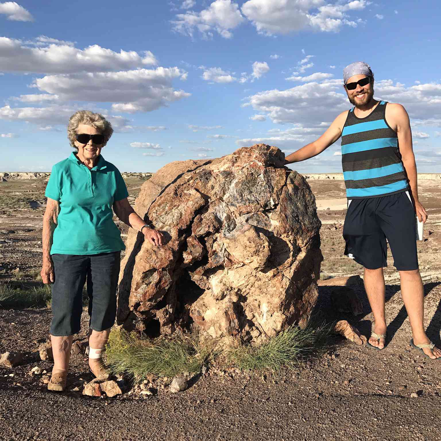 The Petrified Forest National Park in Arizona was one of Grandma Joy's favorite places.