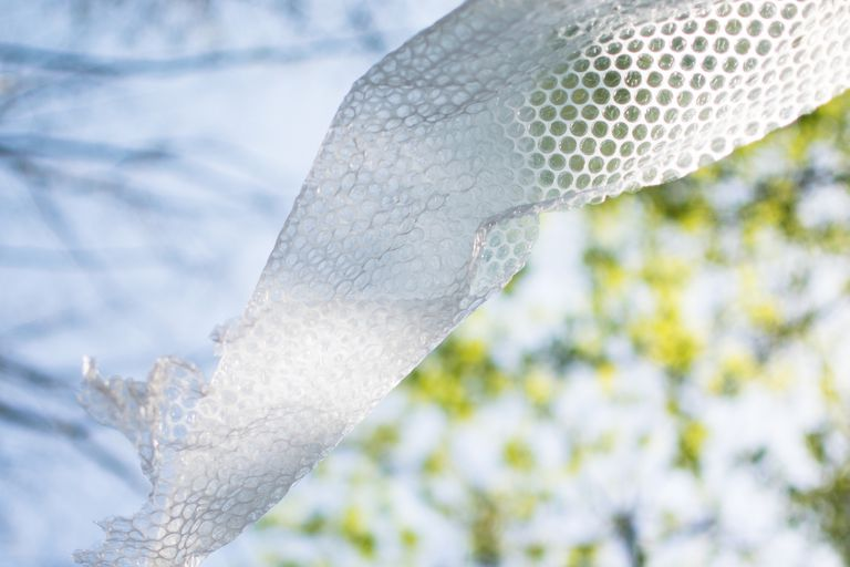 Image of bubble wrap against tree background