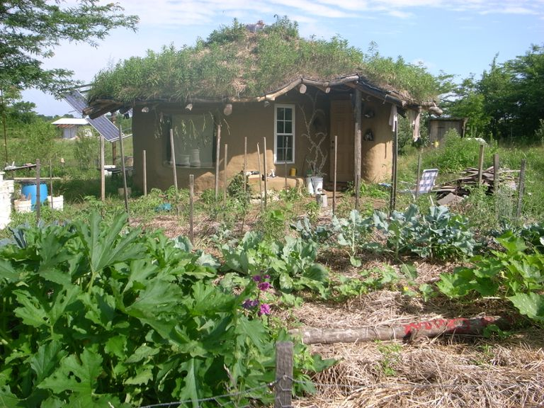 Cob house is made with a mixture of straw, clay, and sand.