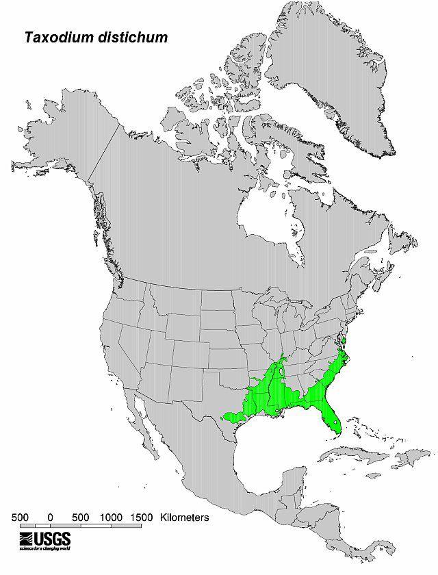 Map of Oak-Gum-Cypress Type