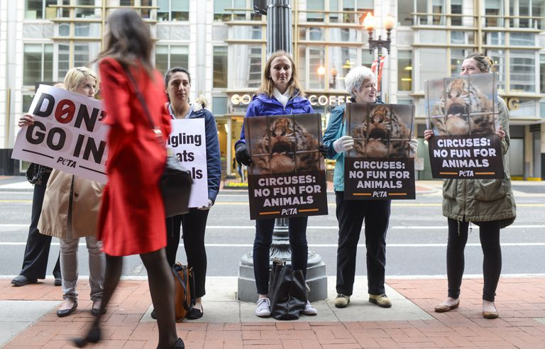 PETA Protests Final Ringling Brothers Performance In DC